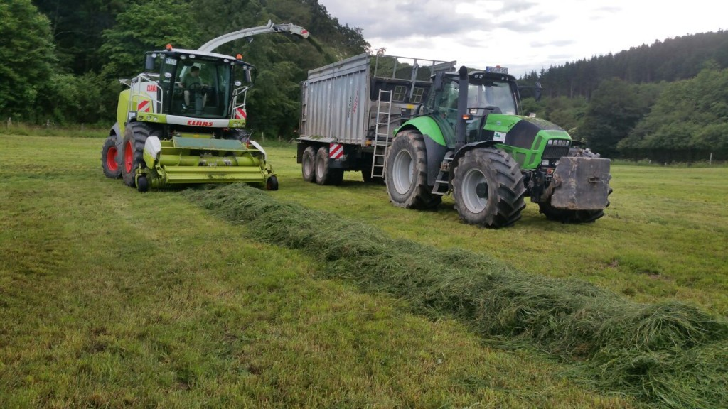 Silage 2016 1